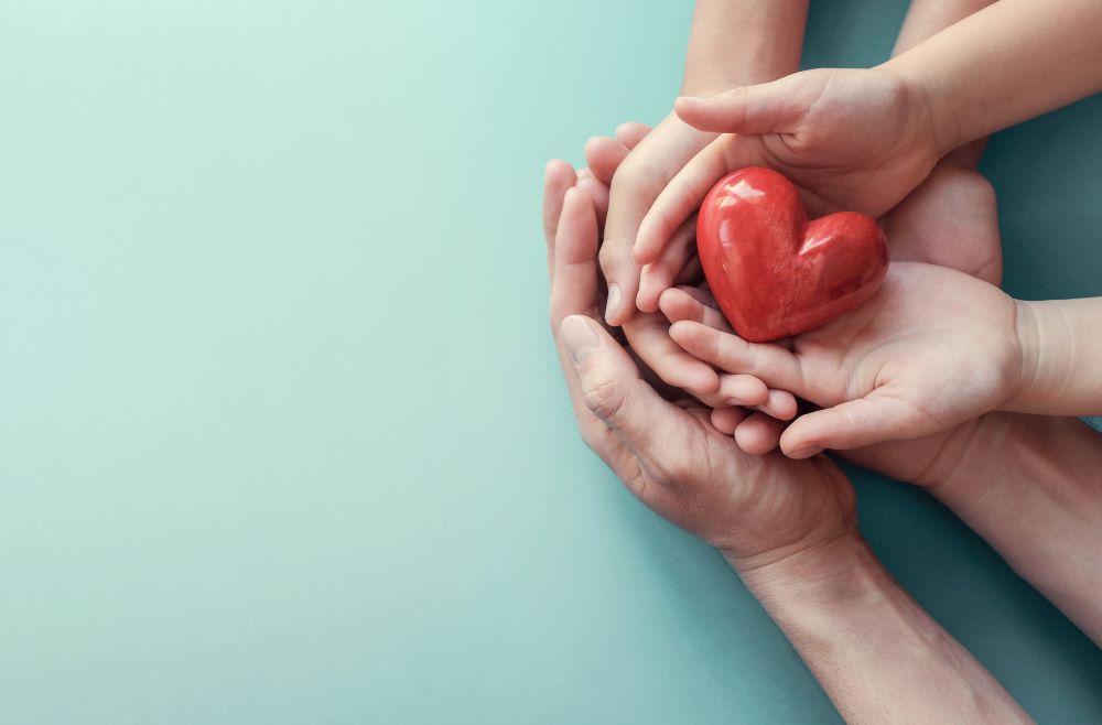 Lion Heart Health Supplement